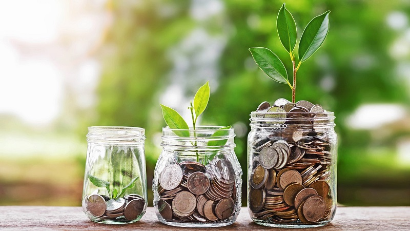 cum să faci și să economisești bani